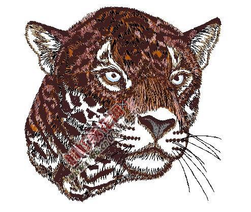 动物老虎头绣花图片
